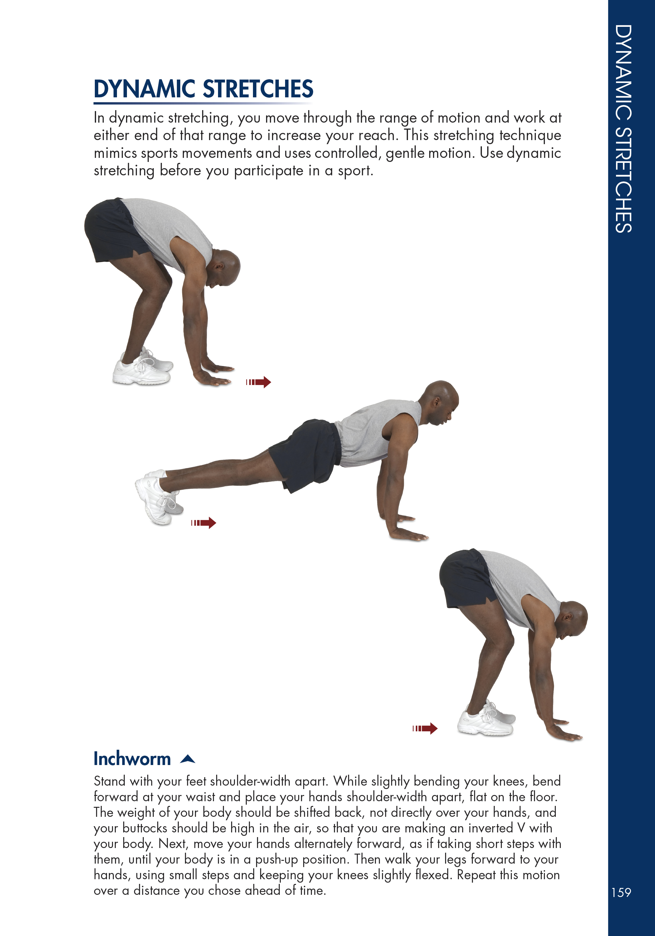 Dynamic stretches