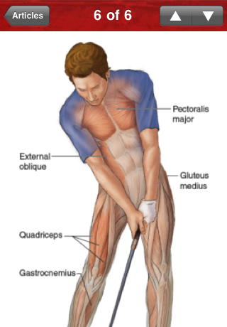 Golf Anatomy image screenshot