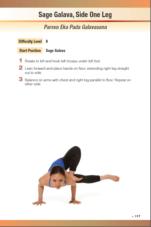 Sage Galavana, Side One Leg asana