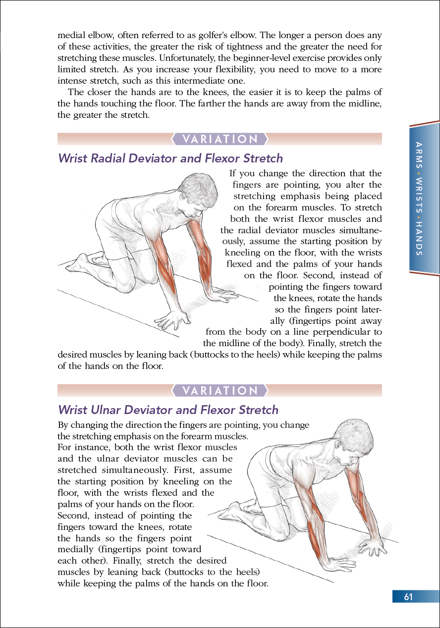 Intermediate Wrist Flexor Stretch cont.